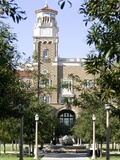 Texas Tech University - English and Philosphy Building Through the Trees Fotografisk tryk