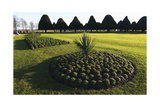 Hampton Court formal gardens Impressão fotográfica por Charles Bowman
