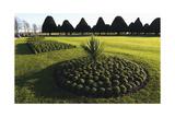 Hampton Court formal gardens Photographic Print by Charles Bowman