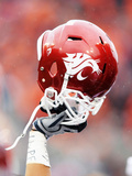 Washington State University - Washington State Helmet Fotografisk tryk