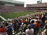 University of Florida - Ben Hill Griffin Stadium Photographic Print
