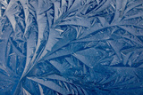 Frost patterns Photographic Print by Charles Bowman