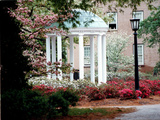 University of North Carolina - UNC's Old Well Framed by Spring Flowers Photographic Print