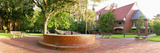 University of Florida - Gator Statue Panorama Photographic Print by Russell Grace