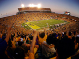 Louisiana State University - Tiger Stadium Prints