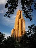 University of Pittsburgh - Leaves Frame the Cathedral Photographic Print by Will Babin