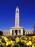 Louisiana State University - Memorial Tower Foto