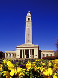 Louisiana State University - Memorial Tower Photo