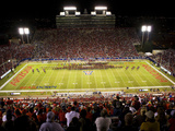 University of Arizona - Arizona Stadium: Home of the Wildcats Fotografisk tryk