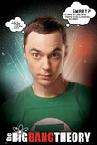 The Big Bang Theory-Sheldon Poster