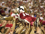 Washington State University - Butch T. Cougar Crowd Surfs Photo