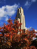 University of Pittsburgh - Autumn Leaves at the Cathedral of Learning Photographic Print by Will Babin