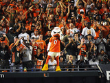 University of Miami - Miami Mascot Photo