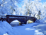 University of Colorado - Varsity Bridge Photographic Print