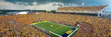 Louisiana State University - LSU Sea of Gold Photographic Print