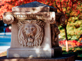Purdue University - The Roar of Autumn Photographic Print