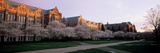 University of Washington - Quad Panorama Prints