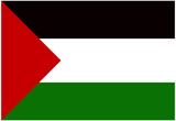 Palestine Flag Print