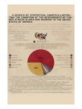 A Series of Statistical Charts ... Descendants of Former African Slaves ... Premium Giclee Print
