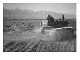 Benji Iguchi Driving Tractor in Field Prints by Ansel Adams
