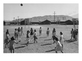 Vollyball Art by Ansel Adams