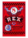 8 Rex Poster