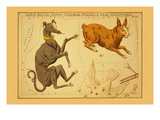 Canis Major, Lepus, Columba Noachi and Cela Sculptoris Premium Giclee Print by Aspin Jehosaphat