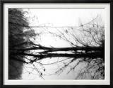 Toppoint Framed Photographic Print by Sharon Wish