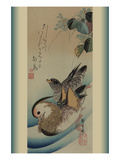 Mandarin Ducks Prints by Ando Hiroshige