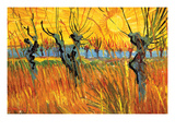 Pollard Willows at Sunset Poster by Vincent van Gogh