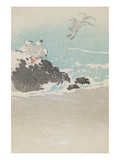 Plovers over Waves Prints