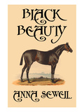 Black Beauty Art by Anna Swell