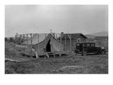 Migrant Tent Life Art by Dorothea Lange