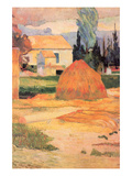 Farmhouses in Arles Prints by Paul Gauguin