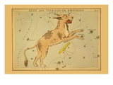 Lynx and Telescopium Herschilii Prints by Aspin Jehosaphat