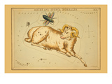 Aries and Musca Borealis Print by Aspin Jehosaphat