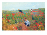 Poppies Premium Giclee Print by Mary Cassatt