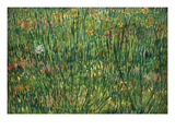 Patch of Grass by Van Gogh Premium Giclee Print by Vincent van Gogh
