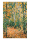 Wood Lane Poster by Claude Monet