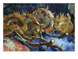 Four Sunflowers Gone to Seed by Van Gogh Posters by Vincent van Gogh