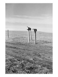 The Rolling Lands Premium Giclee Print by Dorothea Lange
