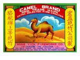 Camel Brand Extra Selected Firecracker Art