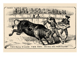 The Bull Killed Two Men. Do You See their Heads Prints by  Theo Leonhardt & Son