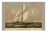 Thistle: Cutter Yacht Premium Giclee Print