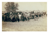 Roping and Changing Scene at Camp on Round Up on Cheyenne River Print by John C.H. Grabill