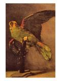 Parrot Poster by Vincent van Gogh