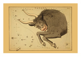 Taurus the Bull Premium Giclee Print by Aspin Jehosaphat