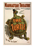 "Manhattan Theatre Production ""The Turtle"" Posters"