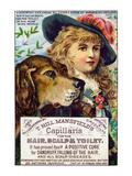 T. Hill Mansfield's Capillaris Premium Giclee Print