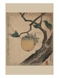 Grasshopper Eating Persimmon. Kunstdrucke von Katsushika Hokusai